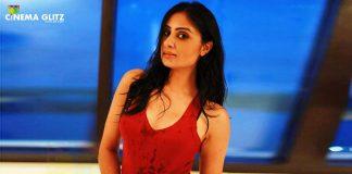 Actress Bhanushree Pics
